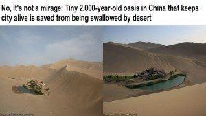 حقيقة استصلاح الصحراء في الصين