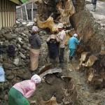 حقيقة اكتشاف حفريات عملاقة