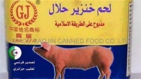 حقيقة انتاج الجزائر لحم خنزير حلال
