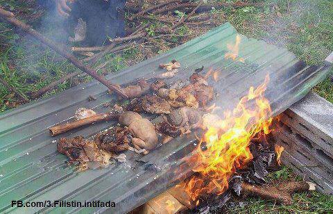 حقيقة حرق أطفال المسلمين في بورما