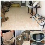 حقيقة صور أجهز التجسس أثناء هدم قاعات المؤتمرات في مدينة نصر