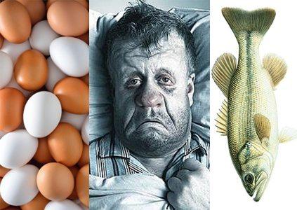 حقيقة أكل السمك و البيض مع الانفلونزا