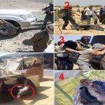 حقيقة صور لبعض انتهاكات الجيش بسيناء.