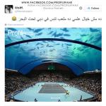 حقيقة ملعب تنس تحت المياه في دبي .