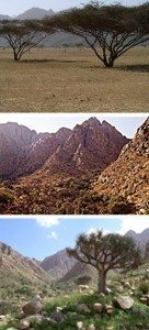 حقيقة صور من جبل علبة في حلايب وشلاتين