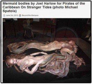 حقيقة صورة عروسة البحر
