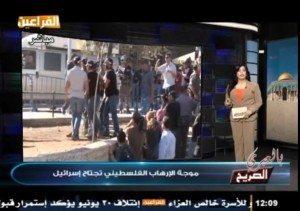 """حقيقة عرض قناة الفراعين لخبر """"موجة الإرهاب الفلسطيني تجتاح إسرائيل"""" ."""