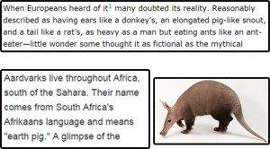 حقيقة ظهور فئران بحجم كبير في السودان.