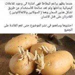 حقيقة تسمم البطاطس بالسولانين