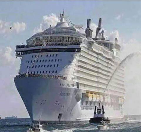 حقيقة عبور اكبر سفينة ركاب لقناة السويس الجديدة