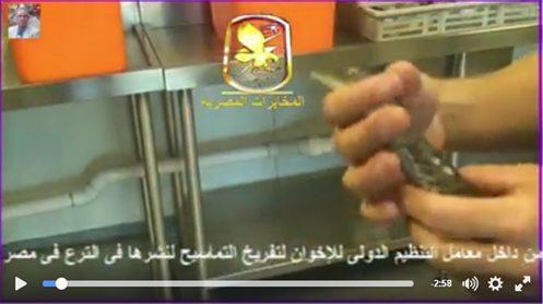 حقيقة مزرعة اخوانية للتماسيح لنشرها في الترع في مصر