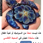 حقيقة صورة لسلحفاة تعيش في المحيط الأطلسي