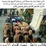 حقيقة صورة تكفيريين الجيش قبض عليهم