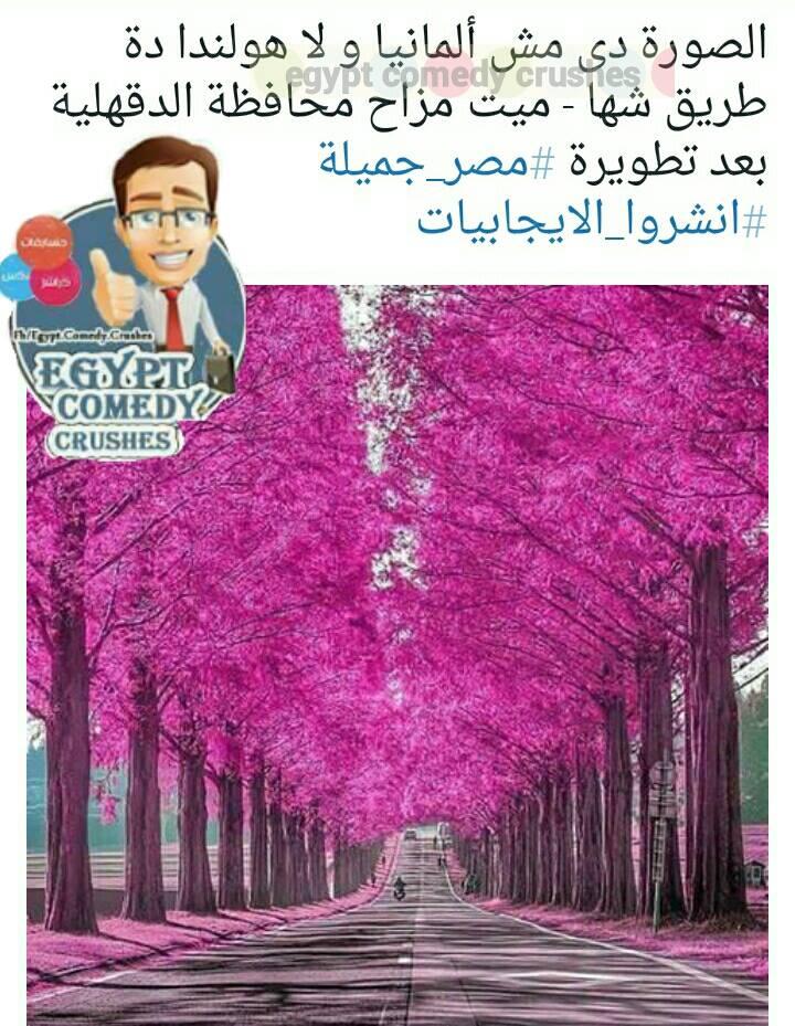 حقيقة صورة طريق شها – ميت مزاح بعد التطوير