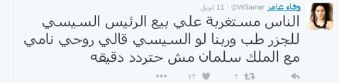 حقيقة تويتة لوفاء عامر عن بيع الجزرتين