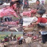 حقيقة صور تقطيع و تعذيب مسلمي بورما