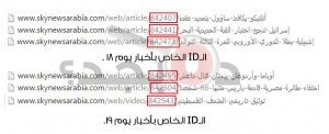 حقيقة نشر خبر سقوط الطائرة المصرية قبلها بـ 3 أيام