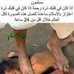 حقيقة صورة واحد بيعذب طفل في بورما