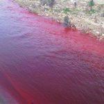 حقيقة صورة لنهر دماء في حلب