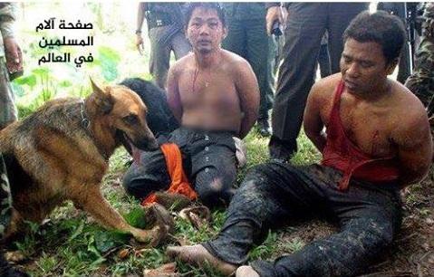 حقيقة صورة مسلمين مضطهدون في تايلاند