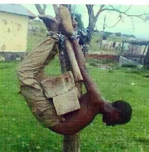 حقيقة صورة تعذيب راجل في بورما