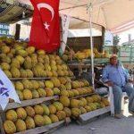 حقيقة إن أخو أردوغان بيبيع بطيخ