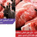 حقيقة إن كل المصريين أكلوا لحمير و إن كل من زار شرم الشيخ وطابا أكل لحم حمير