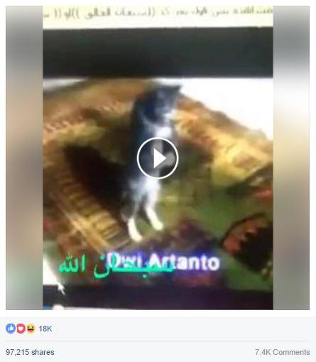 حقيقة فيديو لقطة بتصلي