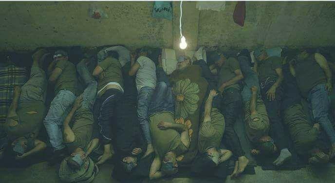 حقيقة صورة في السجون المصرية