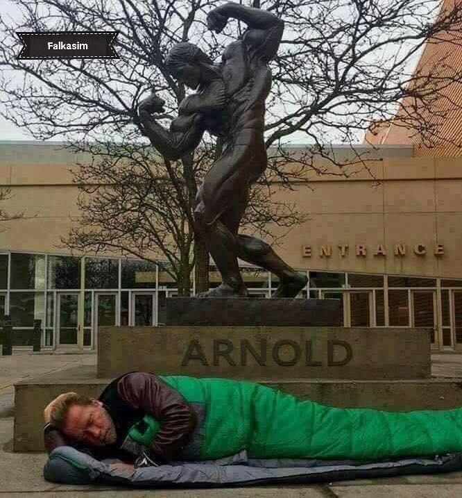 حقيقة نوم الممثل أرنولد شوارزينجر في الشارع بعد طرده من فندق
