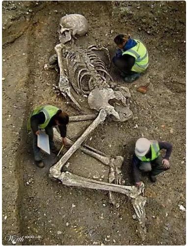 حقيقة اكتشاف الهيكل العظمي لجليات الجبار