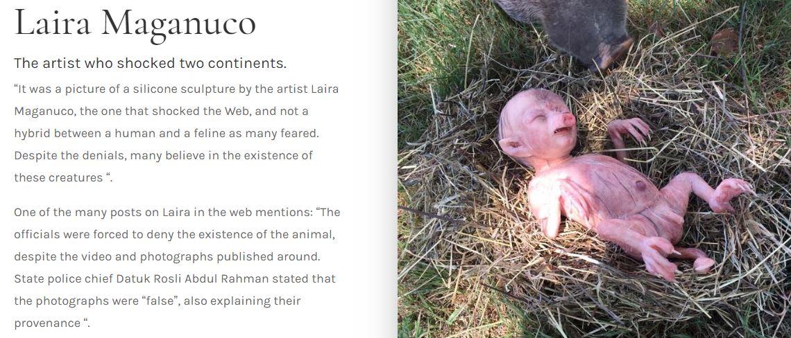 حقيقة خنزير يلد مولوده على شكل طفل