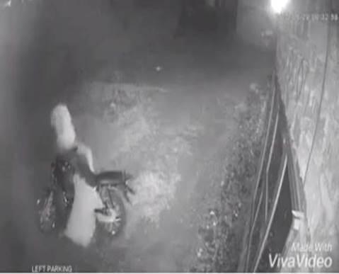 حقيقة فيديو لحادثة قتل في مصر